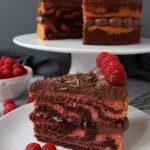 Chocolate & Raspberry Zebra Cake