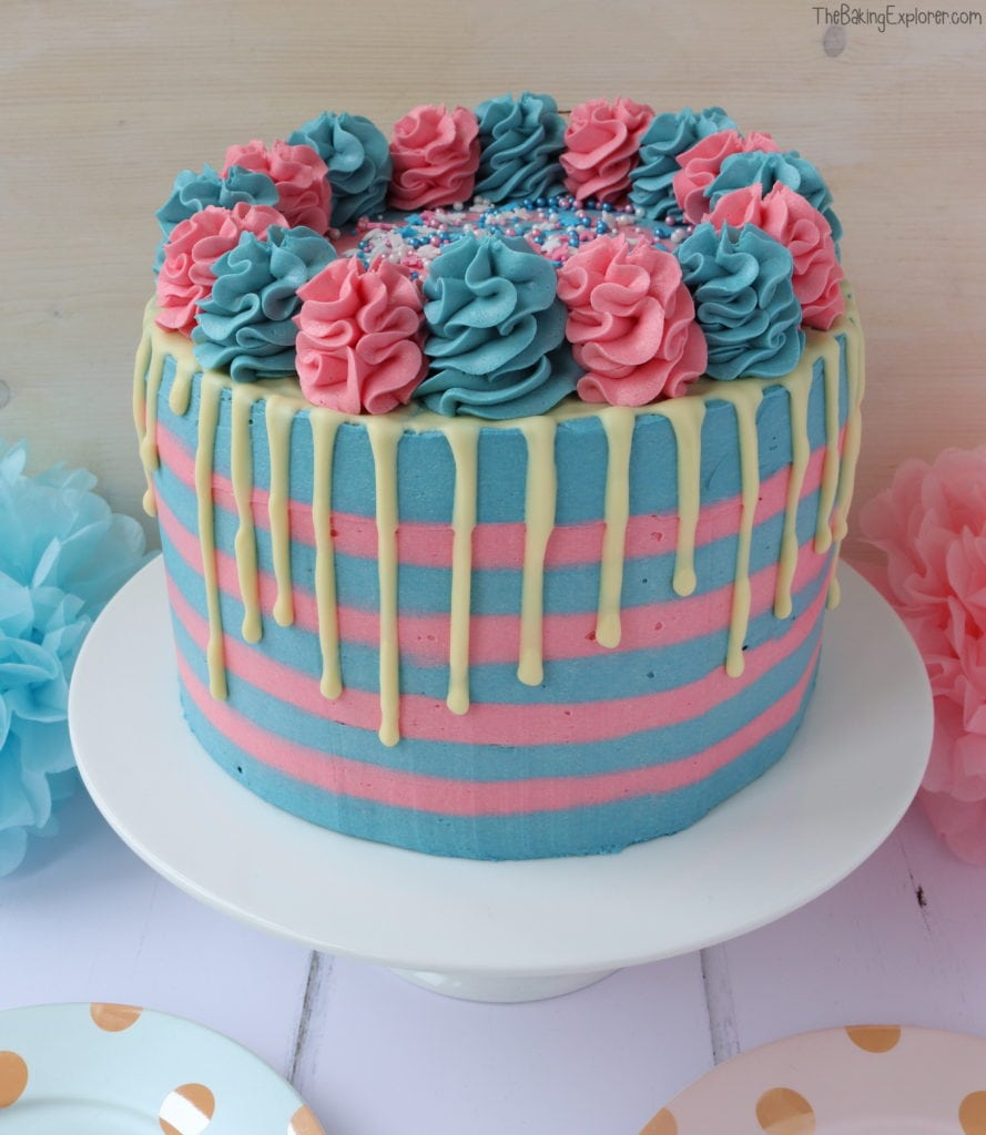 2 Pink and 2 Blue Baby Gender Reveal Pink and Blue 30-Second Color