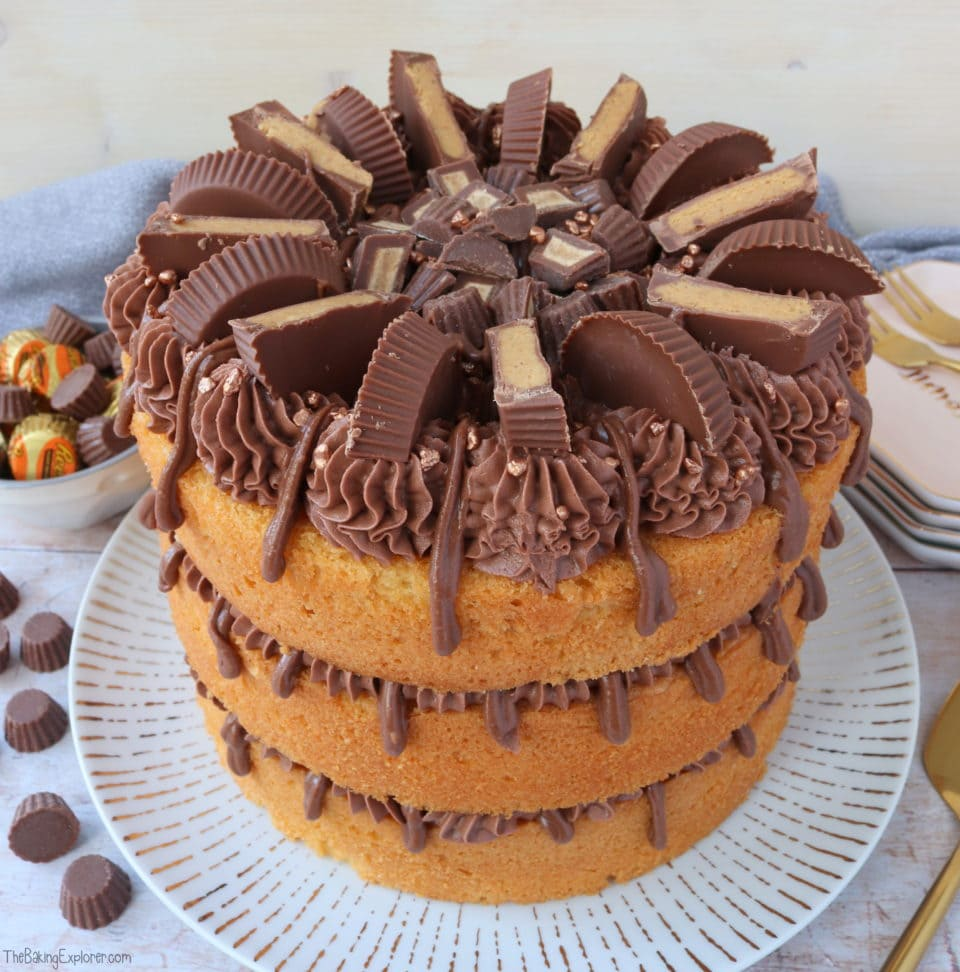 Reese S Peanut Butter Cake The Baking Explorer